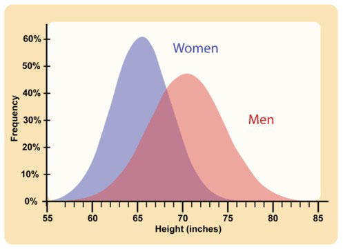 Polygenic Characteristics of Men and Women